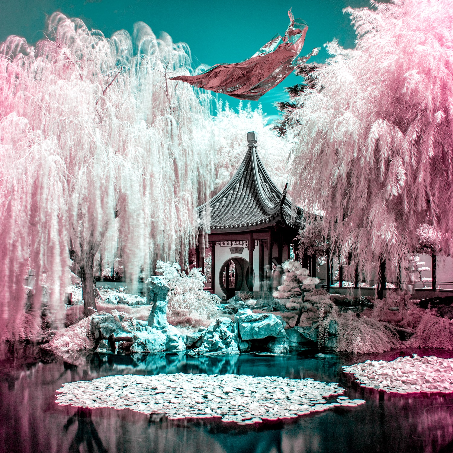 infrared photo los angeles